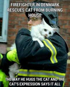 firemanrescuescat